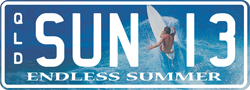 Surfing - Endless Summer