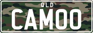 Camo theme plate with white writing on a camouflage print background. The combination reads C A M O O.