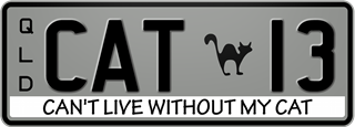 Cat theme plate with black writing on a grey background. The combination reads C A T 1 3. A silhouette of a cat separates the T and the 1. The words 'Can't Live Without My Cat' are beneath the combination.